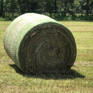 Bale of Hay at Daystar Farms